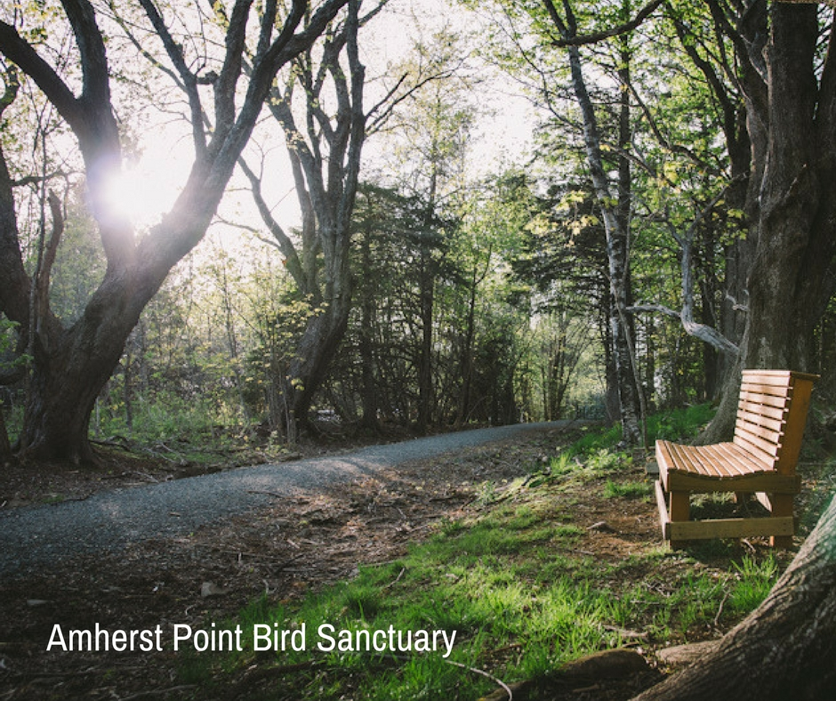 Point Bird Sanctuary 1