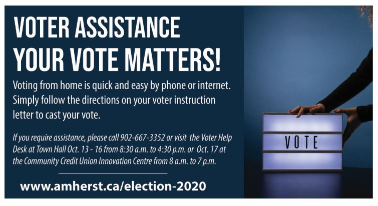 VoterAssistance web